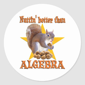 Algebra Squirrel Classic Round Sticker