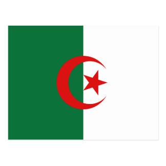 Algeria Flag Postcard