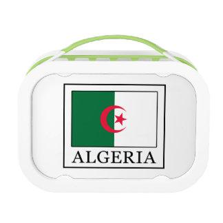 Algeria Lunch Box
