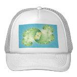 Alges - Fractal