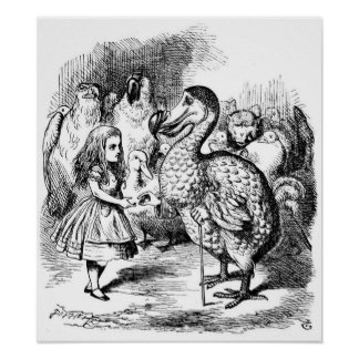 Alice and the Dodo Poster