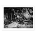 Alice B. Woodward: Scelidosaurus art postcard
