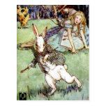 Alice Encounters A Rabbit Distraction