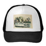 Alice in Wonderland: It's a Mad Tea Party Trucker Hats