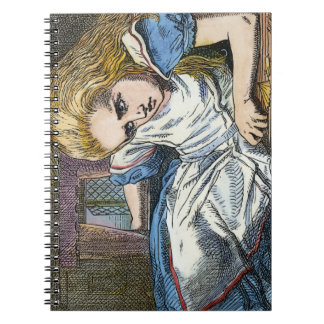 ALICE IN WONDERLAND NOTEBOOKS