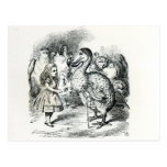 Alice meets the Dodo Postcard