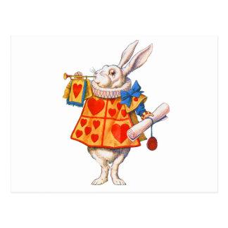 ALICE S WHITE RABBIT POST CARDS
