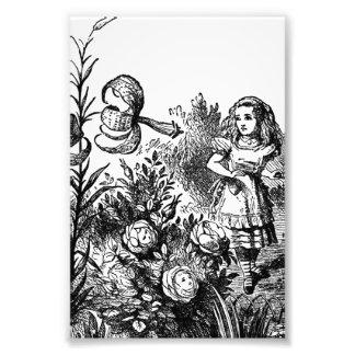 Alice Talks with Garden Flowers Photo Print
