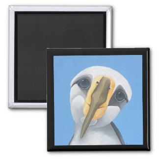 Alice - The Albatross Magnet
