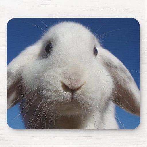 Alice - White Lop Rabbit Mouse Mat