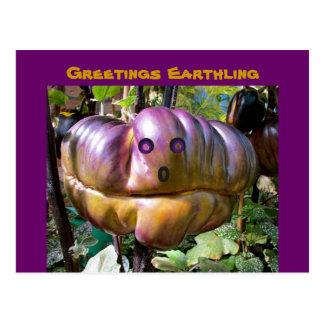 Alien Greetings Earthling funny Food Postcard