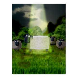 Alien Sheep Experiment Postcard