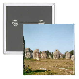 Alignment of standing stones, Megalithic Pins