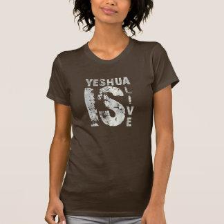 Alive Yeshua is 43975 Gray Tshirt