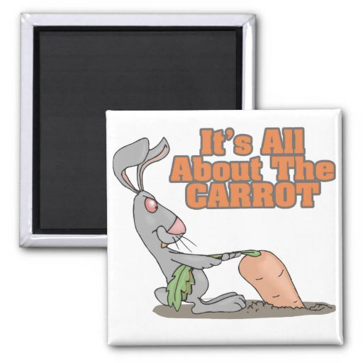 all about the carrot funny bunny rabbit cartoon refrigerator magnets