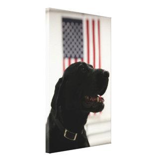 All-American Black Labrador Retriever Gallery Wrapped Canvas