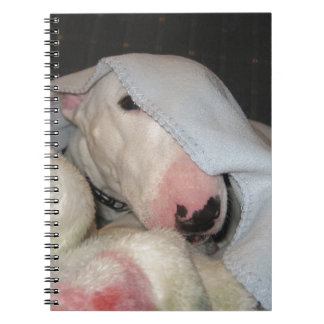 All Covered Up.... Almost! Spiral Note Book