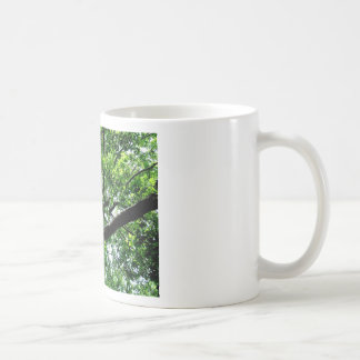 All Depends on The Point of View Basic White Mug