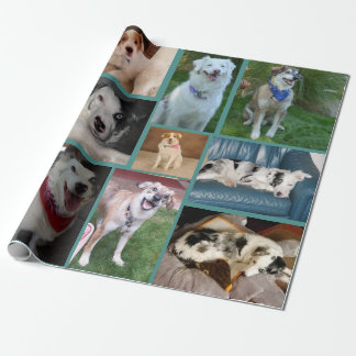 All Dog Wrapping Paper