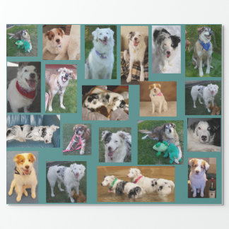 All Dog Wrapping Paper2 Wrapping Paper