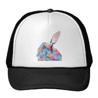 All Ears Cap