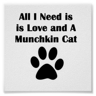 All I Need is Love and A Munchkin Cat Poster
