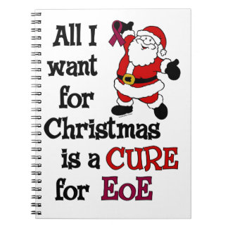 All I Want For Christmas...EoE Note Book