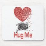 All I Want is a Hug Print Porcupine Art Mousepad