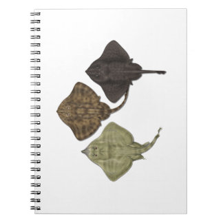 ALL IN FORMATION SPIRAL NOTEBOOKS