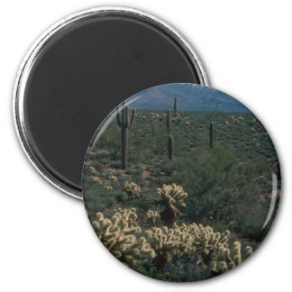 All In One Cacti Forms Refrigerator Magnets