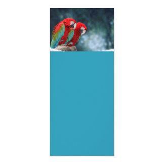 All Occasion Colorful Parrots 10 Cm X 24 Cm Invitation Card
