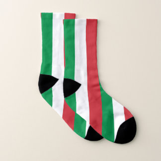 All Over Print Socks with Flag of Italy 1