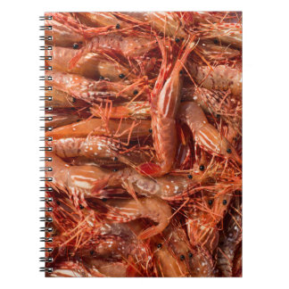 All Prawn and No Brain Notebooks
