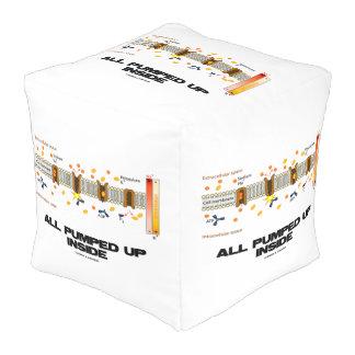 All Pumped Up Inside (Sodium-Potassium Pump) Cube Pouffe