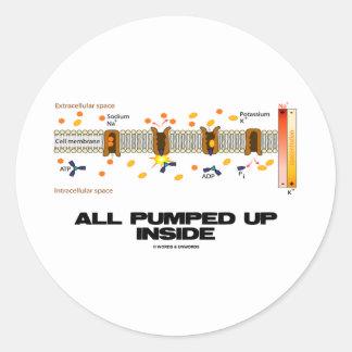 All Pumped Up Inside (Sodium-Potassium Pump) Round Sticker