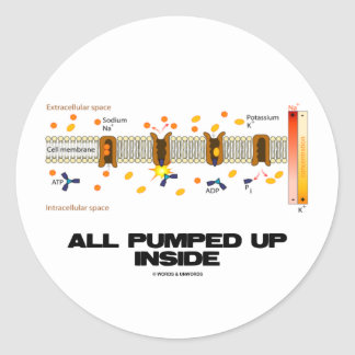 All Pumped Up Inside Sodium-Potassium Pump Round Stickers
