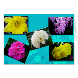All purpose garden flowers greeting card cards