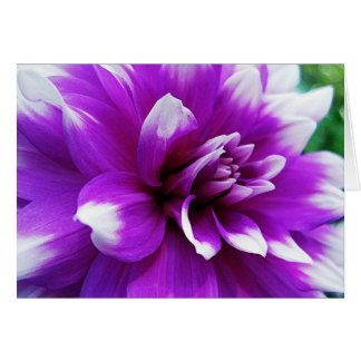 All Purpose Greeting Card with Dahlia Background