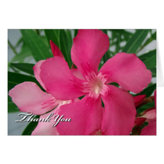 All Purpose Thank You Card, Pink Oleander Flowers Greeting Card