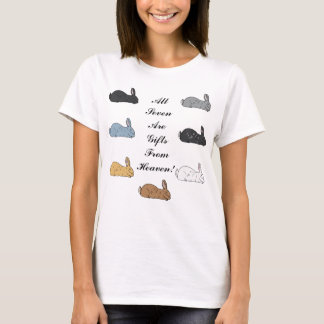 All Seven Are Gifts From Heaven Ladies T-Shirt