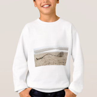All Washed Up With Nowhere To Grow Sweatshirt