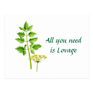 All you need is Lovage Post Card