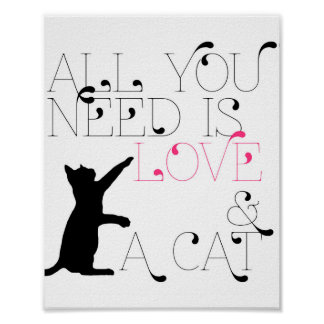 how to know if a cat loves you