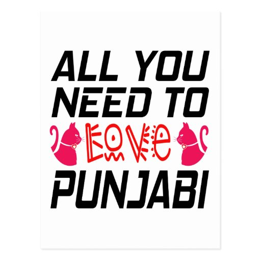 All You Need To Love Punjabi Cat Post Card