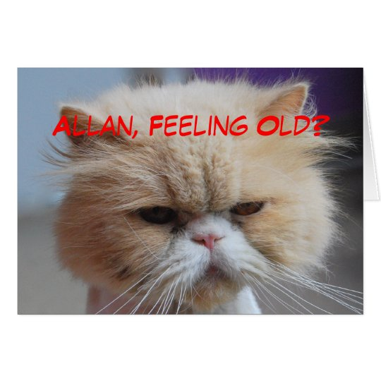 Allan Brother Birthday Persian Cat Humour Card