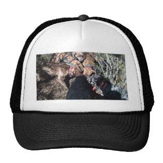 alldogscatch cap