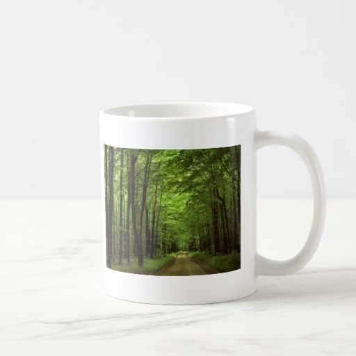 Allegheny National Park, Pennsylvania Basic White Mug