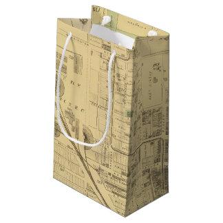 Allegheny ward 2 small gift bag