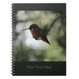 Allen's Hummingbird Spiral Notebook 2