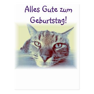 Alles Gute zum Geburtstag Glückwünsche Karte Katze Postcard